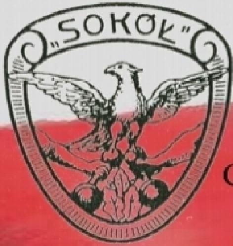 logo CINSP